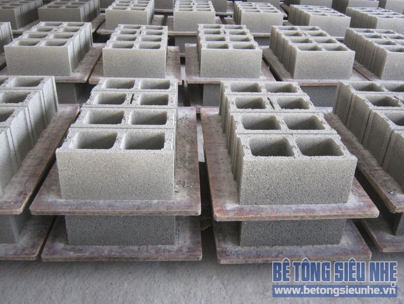 Hướng dẫn cách lựa chọn và sử dụng gạch xi măng cốt liệu