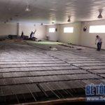 Nâng tầng, sửa nhà kho thuốc bằng sàn bê tông nhẹ Công ty Hanvet Hưng Yên
